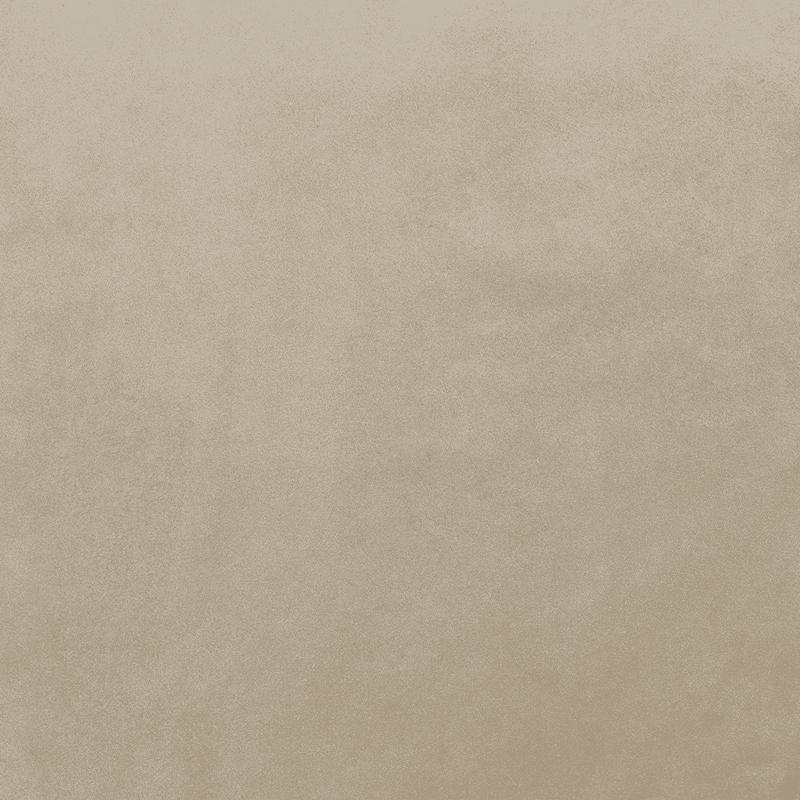Mink Plush Velvet